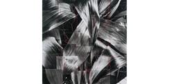 plants017_weaving.jpg