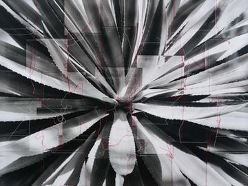 Andy H. Jung: Life and Karma