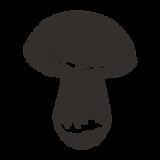 Mushroom bosquejado