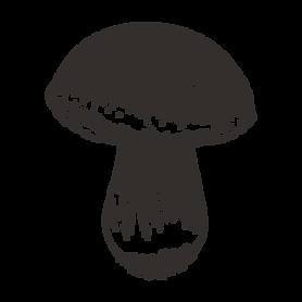 geschetste Mushroom