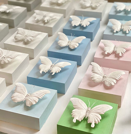 BUTTERFLY_SERIES