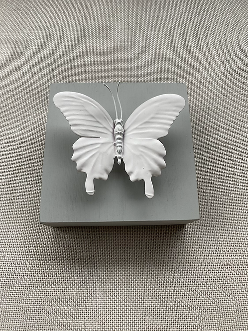 "Grey Butterfly Mini 5""x5"""
