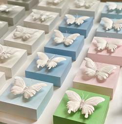 butterflyminis
