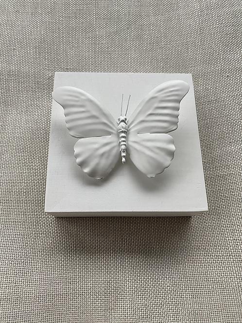 "White Butterfly Mini 5""x5"""