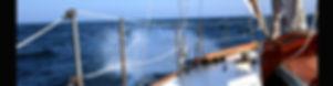 Gitana Blog Title Banner.jpg