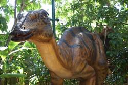 Tsintaosaurus - Perth