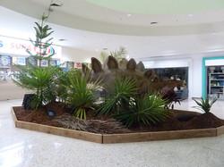 Stegosaurus - Coffs harbour