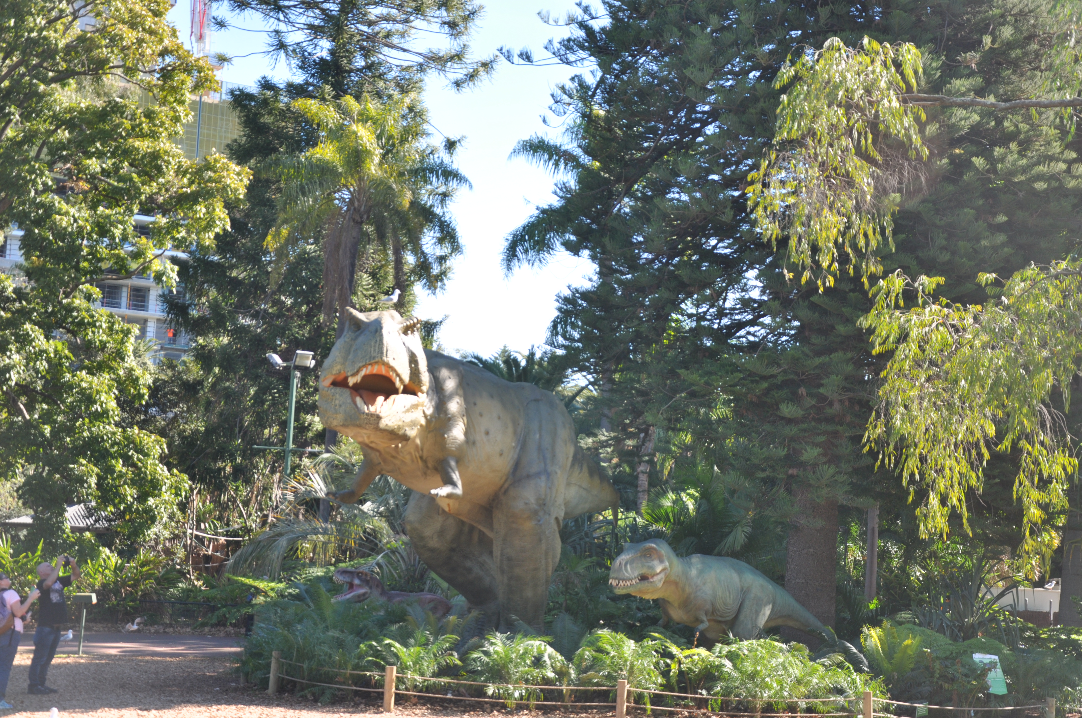 Tyrannosaurus Group - Perth Zoo