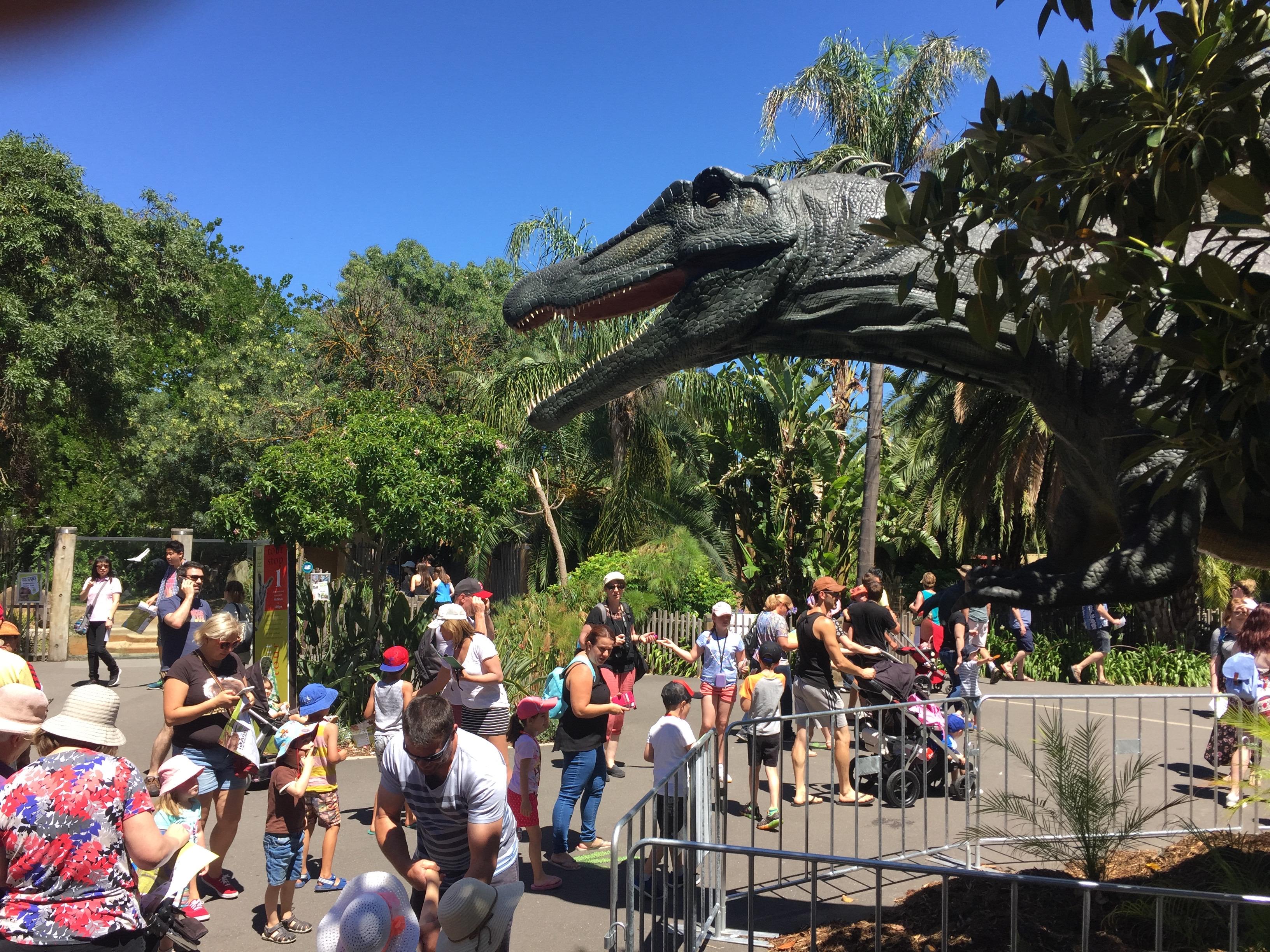Spinosaurus - Adelaide Zoo
