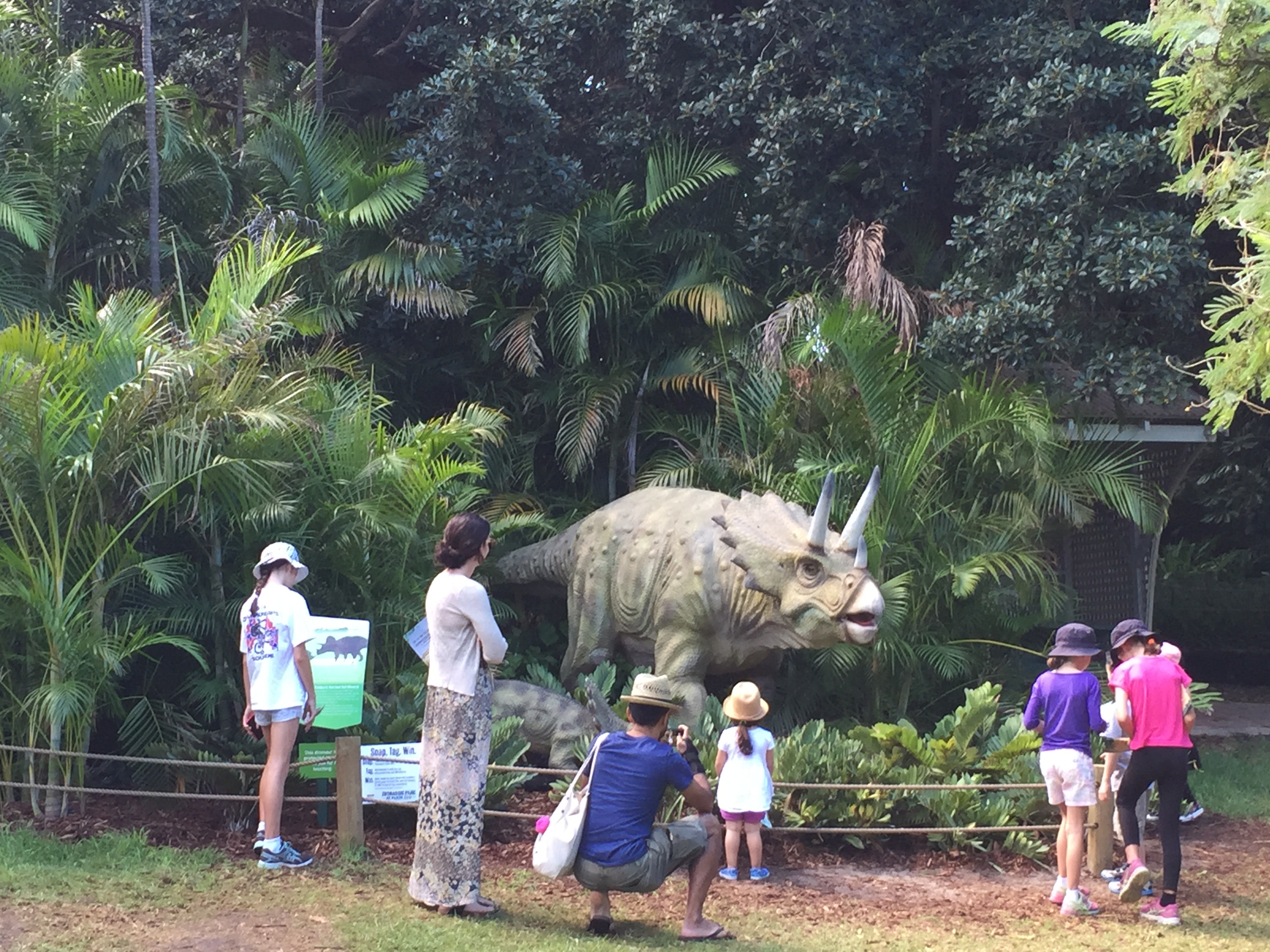 Triceratops and Baby - Perth