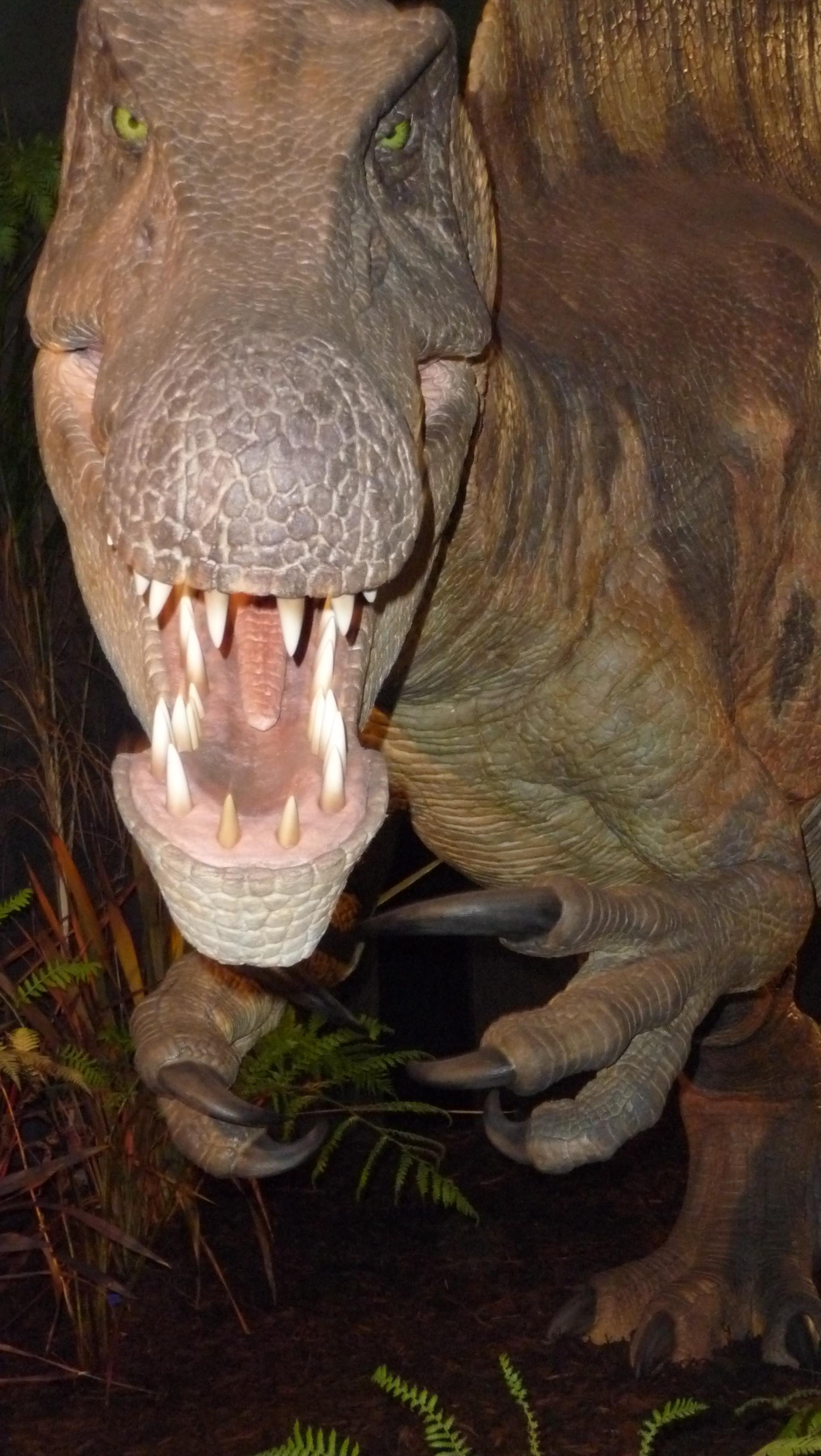 Spinosaurus - Melbourne