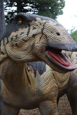 Edomontsaurus - Perth Zoo
