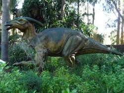 Parasorolophus - Perth Zoo