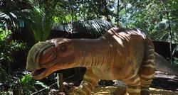Muttaburrasaurus - Perth Zoo