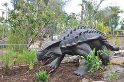 Ankylosaur - Adelaide Zoo