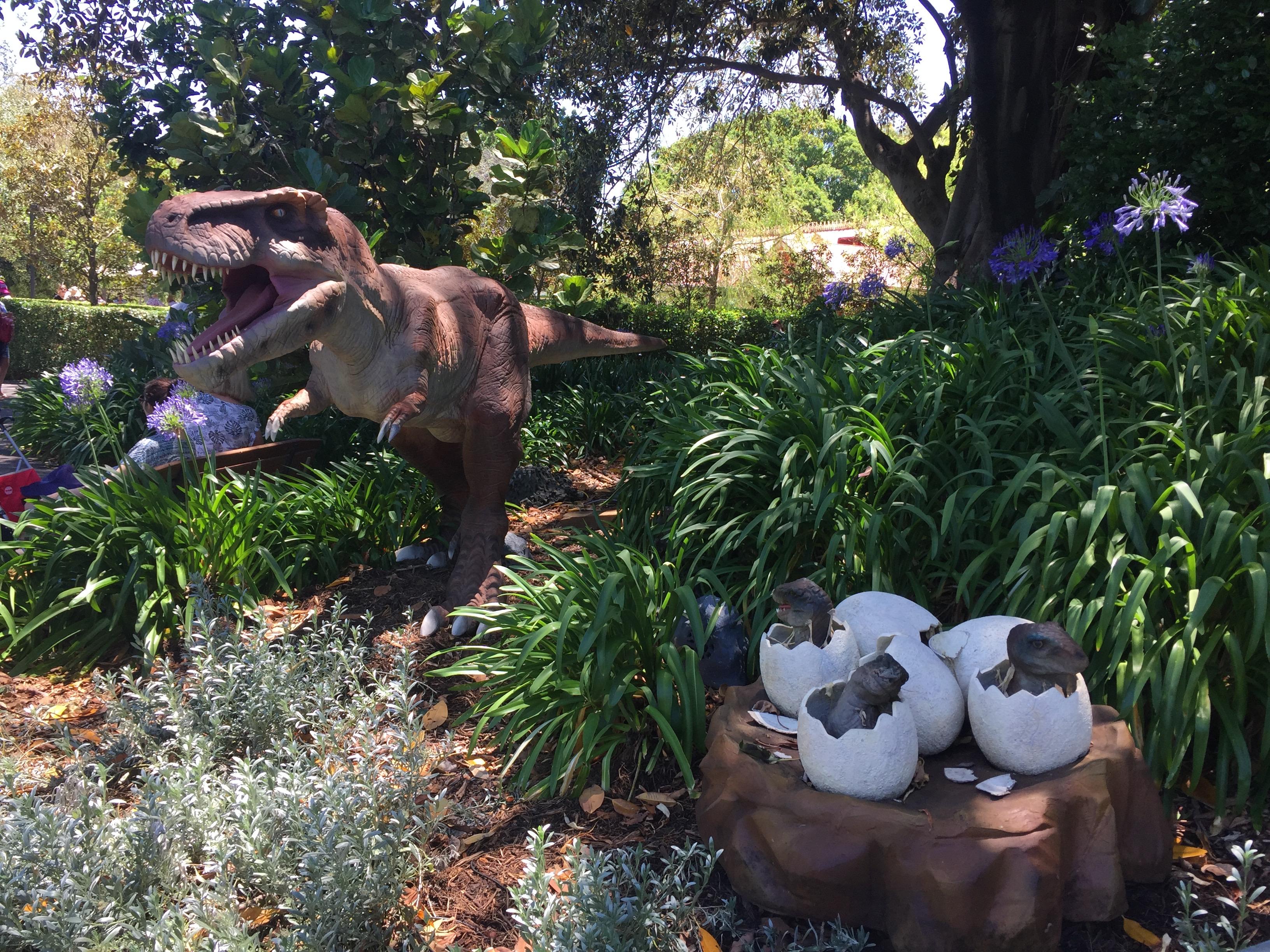 Baby Tyrannosaurus - Adelaide Zoo