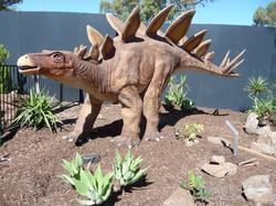 Stegosaurus - Adelaide