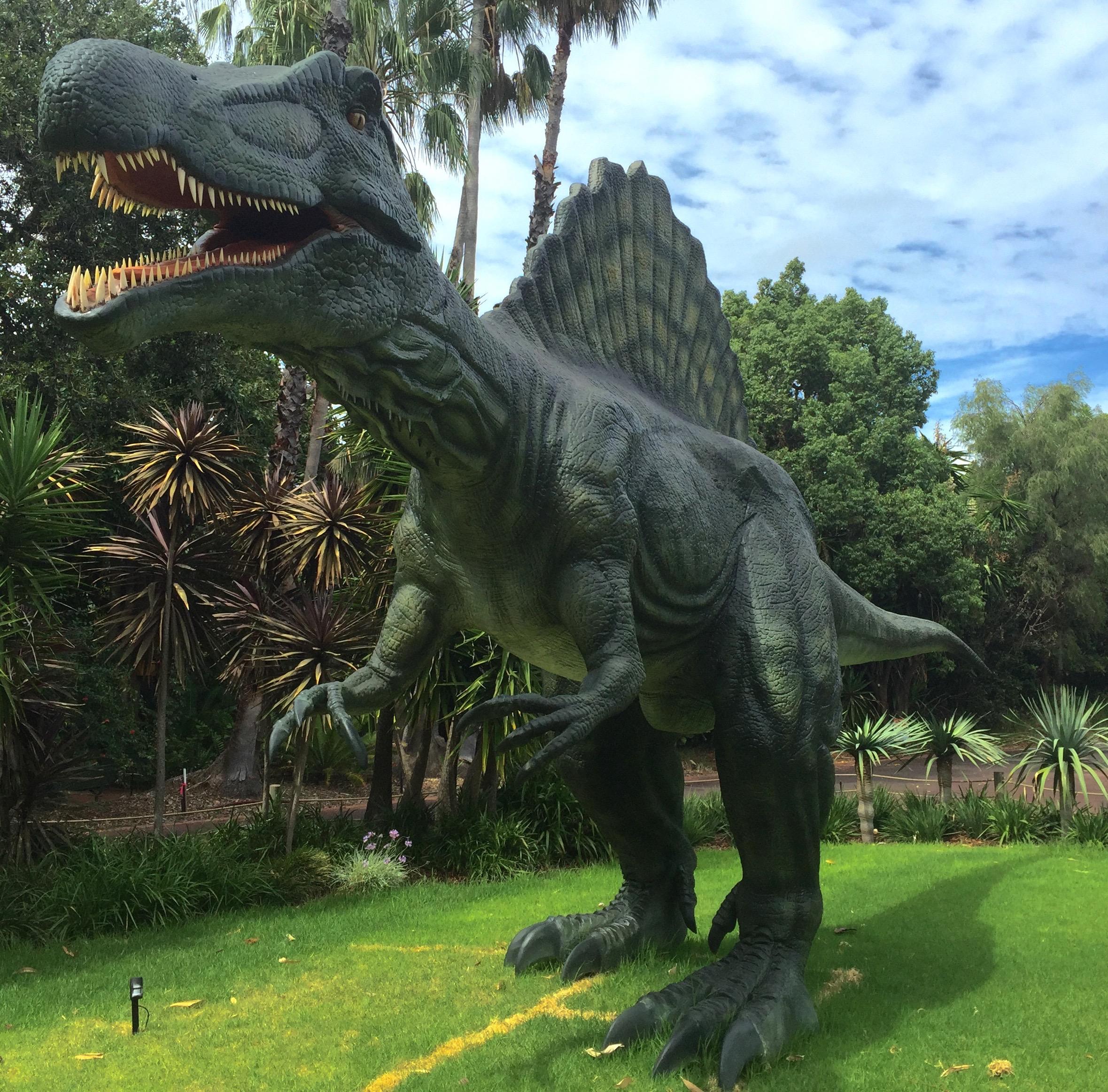 Spinosaurus - Perth Zoo