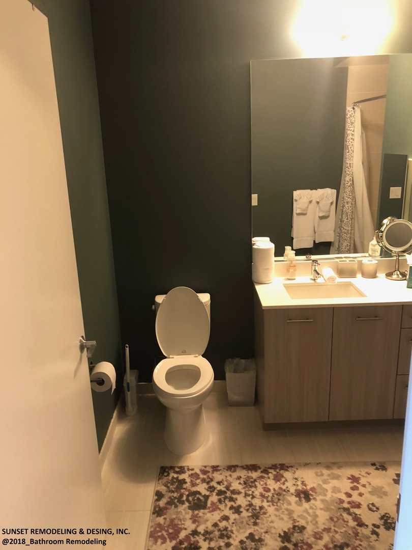 Toilet and Bath room remdeled (2018)