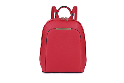 Compact Back pack with many compartments in Red.