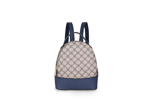 Neat Back pack with many compartments in Beige and Navy.
