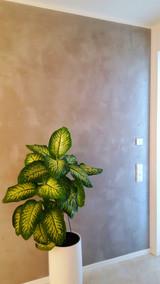 Wandgestaltung (1).jpg