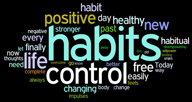 Habits of excellence, changing habits, controlling habits, habits change training, self development training