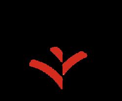 vendome-logo-retina-new