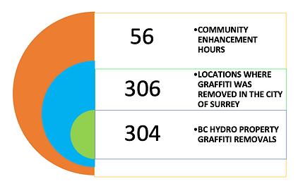 Surrey Anti Graffit 2019 Stats