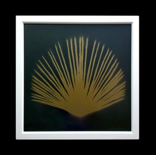 Palmgold