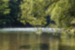 un ansa del fiume