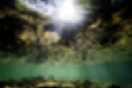 vista subacquea