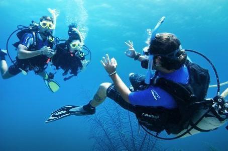 Working as a PADI Divemaster: 10 Attributes You Need to Have Working as a PADI Divemaster