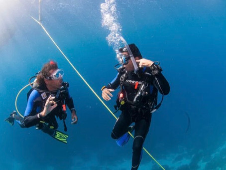 What Is the Difference Between a PADI Divemaster and a PADI Instructor?