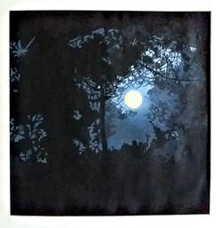 Fill Moon In France