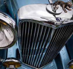 SS Jaguar Grille