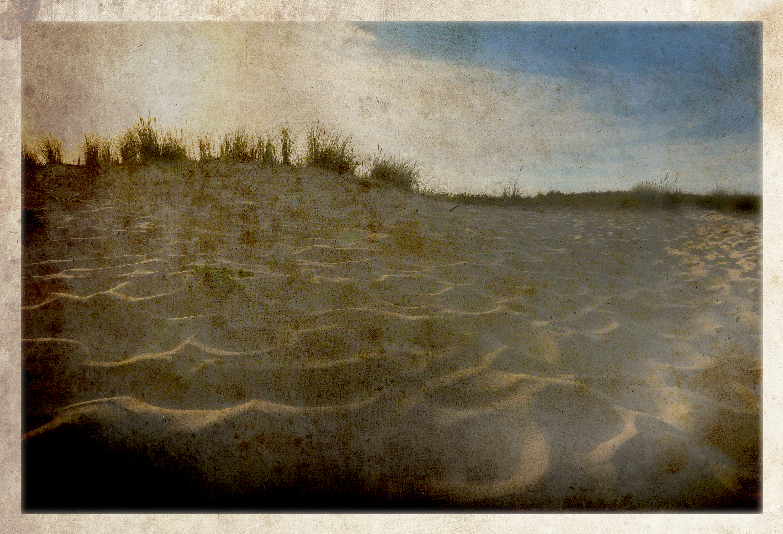 Sun On Sand Dunes