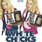 White_chicks.jpg