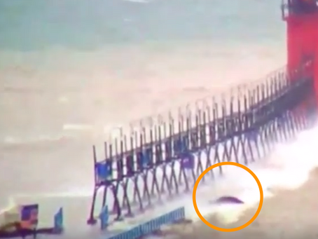 """Video captures """"sea monster"""" swimming near pier in South Haven, MI"""