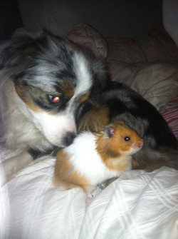 Ashby and her hamster Rexx _3
