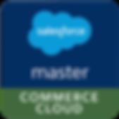 mastercloud logo.png