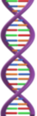 DNA alone.jpg