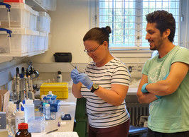 Setting up DNA extractions: Bridging nano- bulk scale.