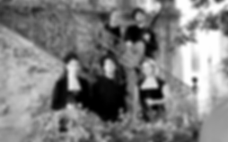 background-la-Vaghezza-424x263.png