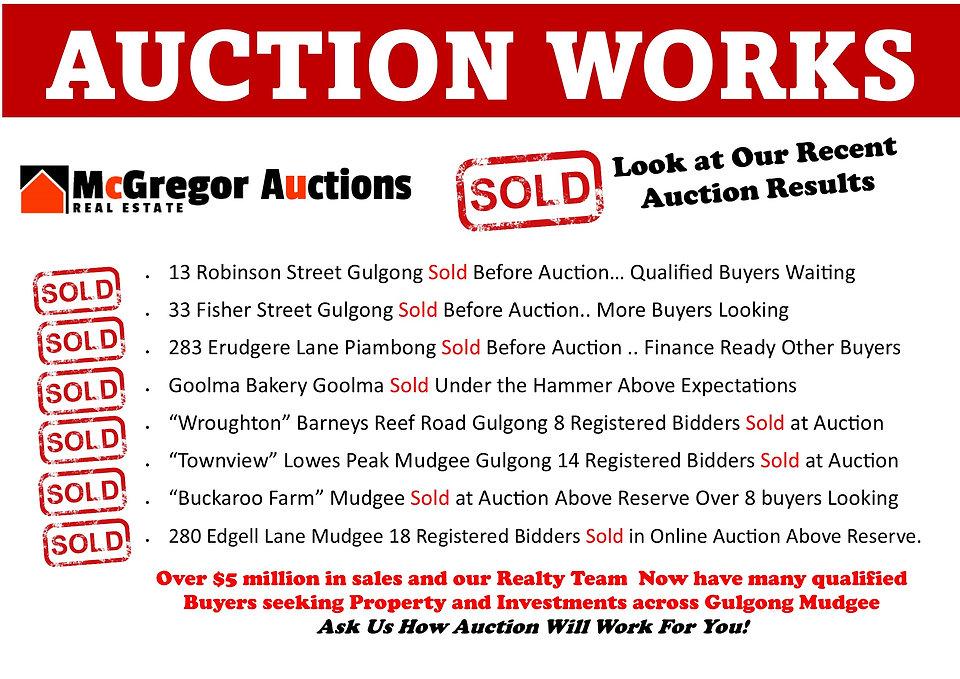 window auction flyer.jpg