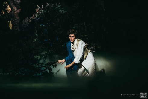 Prince Charmant - Cendrillon- Angers-Nantes Opera