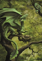 "AN75 ""Forest Dragon"" Card"