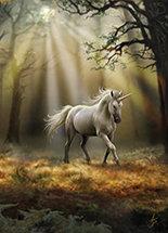 "AN30 ""Glimpse of a Unicorne"" Card"