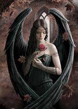 "AN36 ""Angel Rose"" Card"
