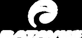 logo-batavus-1.png
